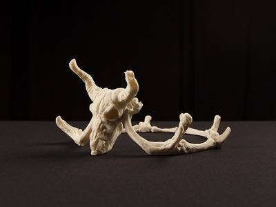 骷髅头冠和头饰-3d打印模型