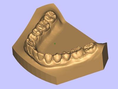 标准牙模-3d打印模型