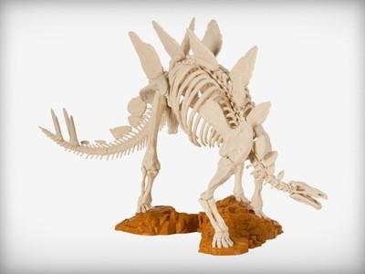 剑龙骨架-3d打印模型