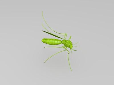 高清蚊子模型-3d打印模型