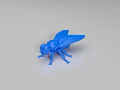 苍蝇-3d打印模型