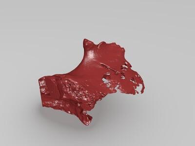 颅骨分解-3d打印模型