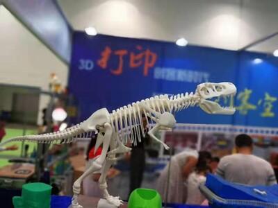 恐龙全身骨架模型-3d打印模型
