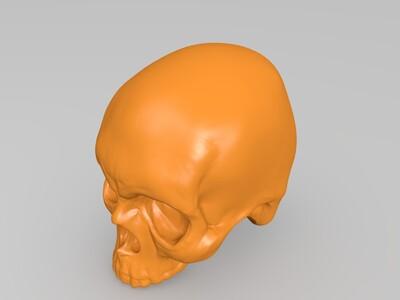 颅骨-3d打印模型
