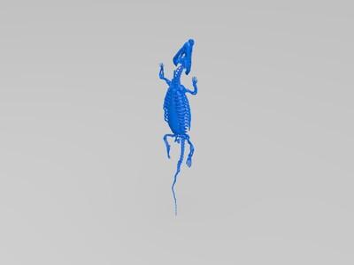鳄鱼骨架内脏(田腾锋)-3d打印模型