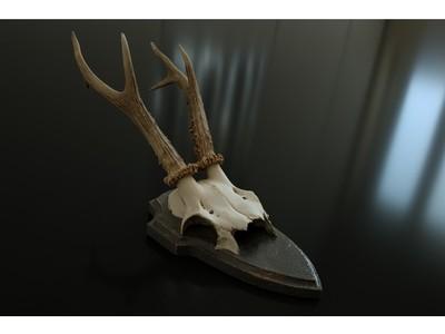 羚羊头骨-3d打印模型