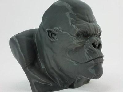 金刚 头像-3d打印模型