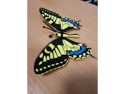 花蝴蝶-3d打印模型