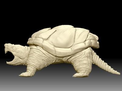 黄金鳄龟-3d打印模型
