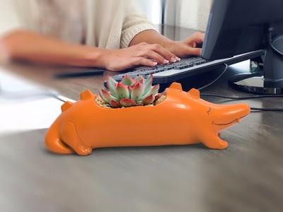 鳄鱼花盆-3d打印模型