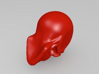 头骨-3d打印模型