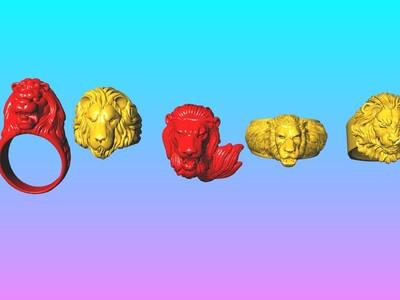 狮王 5 戒指打包-3d打印模型