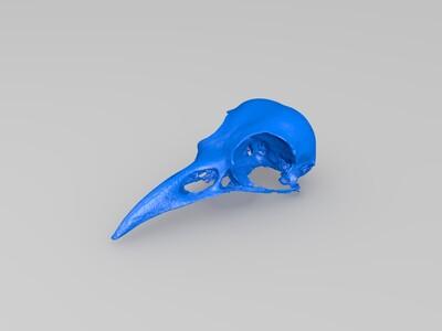 异骨-3d打印模型