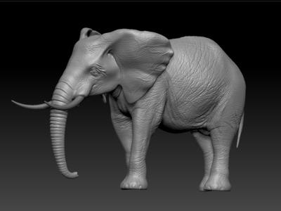 大象-3d打印模型