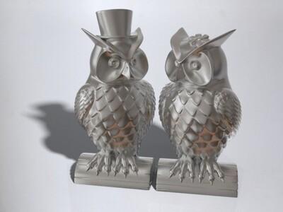 猫头鹰夫妇-3d打印模型