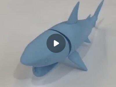 鲨鱼 全身关节可动-3d打印模型